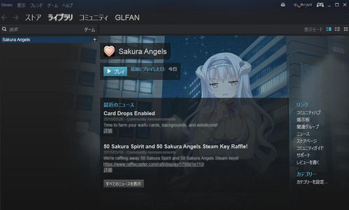 steam_sample2.jpg